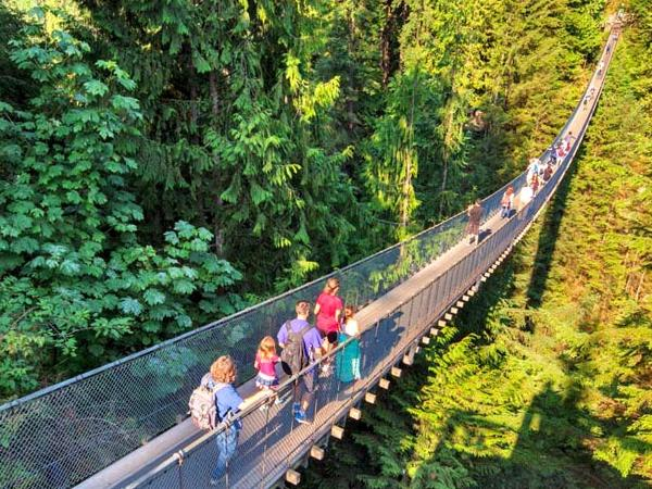 Capilano Suspension Bridge, Stanley Park, Vancouver Highlights and Granville Island