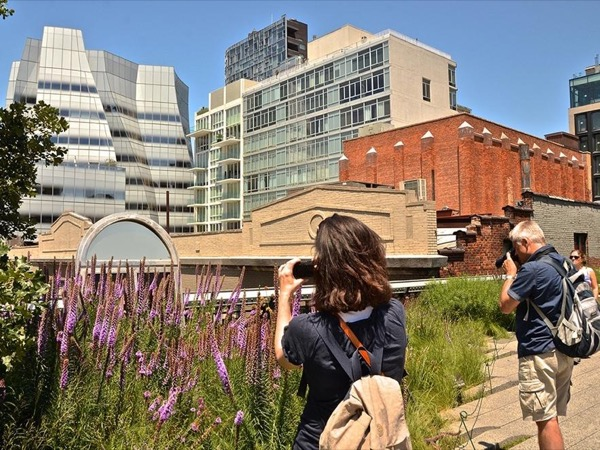 High Line Photo Tour