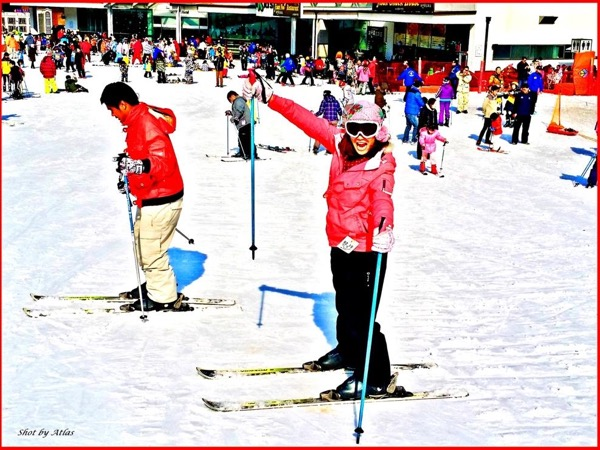 Ski Tour with Lesson by Expert Skier (Snowboard)