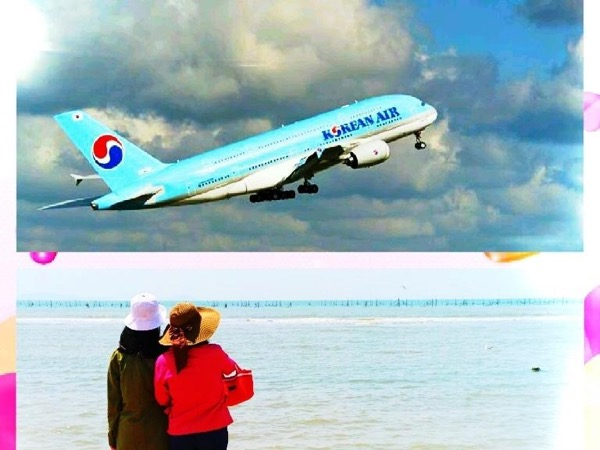 Layover Tour, Incheon, DMZ or Seoul -