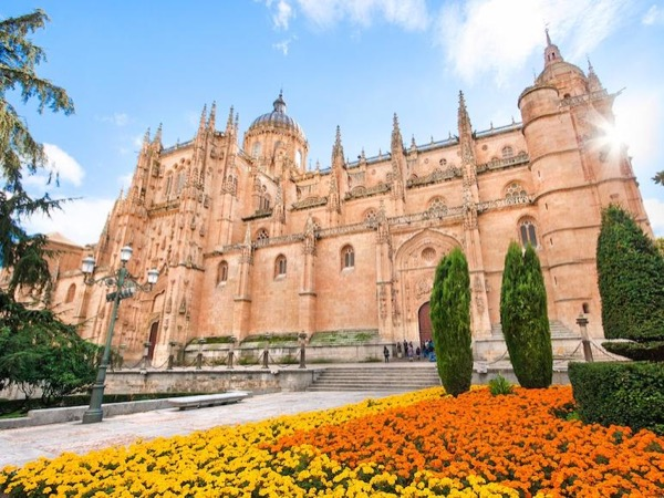 Tour 1 Full Day from Madrid to Salamanca & Avila