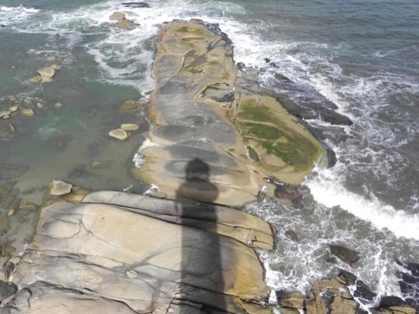 Punta del Este shore excursion + José Ignacio (up to 8 traveller's)