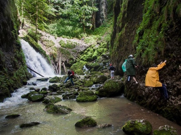 The realm of fairytales - Padis, Apuseni Natural Park