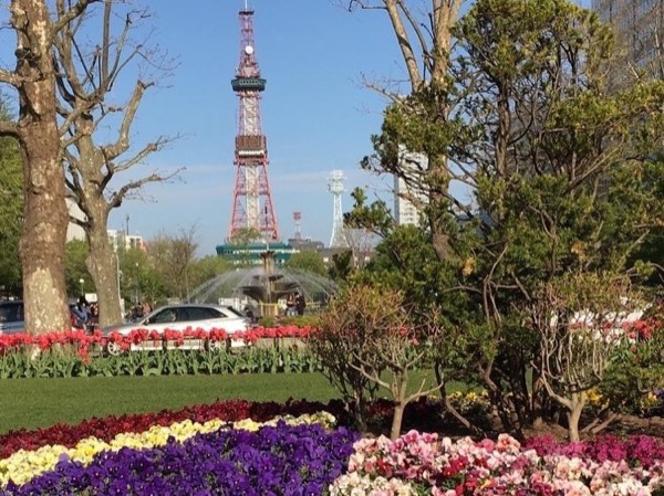 Sapporo highlights full-day tour
