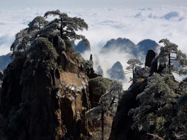 Private 2D1N Huangshan and Ancient village trip from Shanghai by train and fly