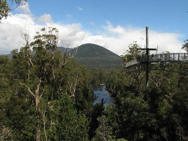 The Huon Valley, Tahune Airwalk and Geeveston - Private tour