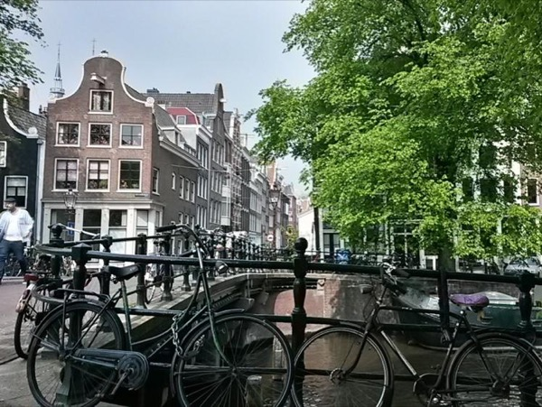 Amsterdam & Surroundings Private Tour
