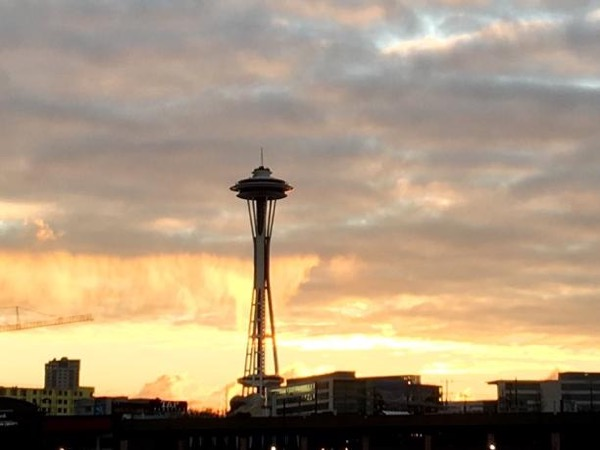Seattle Sightseeing Cocktails and Dinner Tour