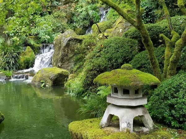 Guided Portland Full Day Garden Tour
