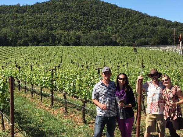 Private Luxurious Wine Country Tour