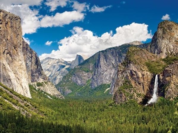 Private Luxurious Yosemite Day Tour