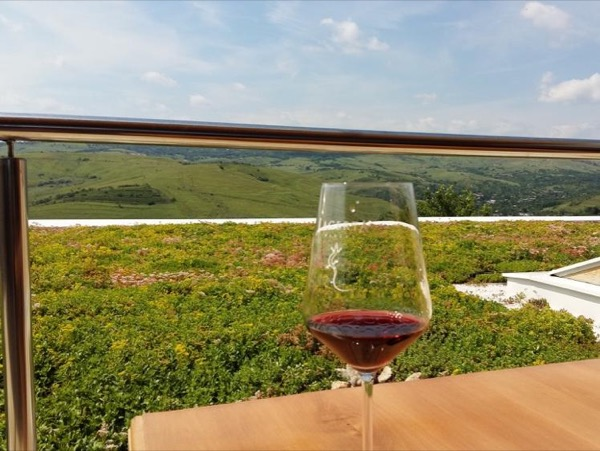 Wine and salt in Romania Private Tour