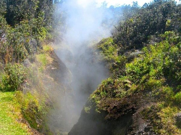 3-hr Hawaii Volcanoes National Park Private Tour