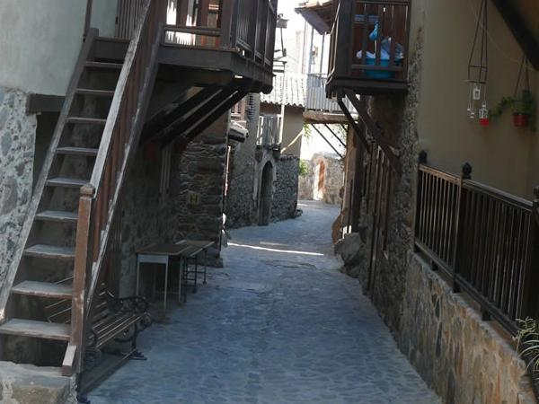 Kakopetria and Agios Nicolaos tis Stegis UNESCO church and optional short Troodos walking tour