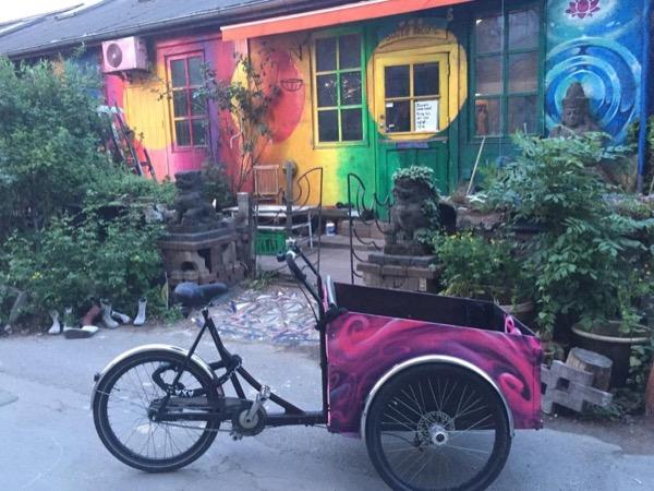 Alternative Copenhagen - Six hours walk or bike private tour