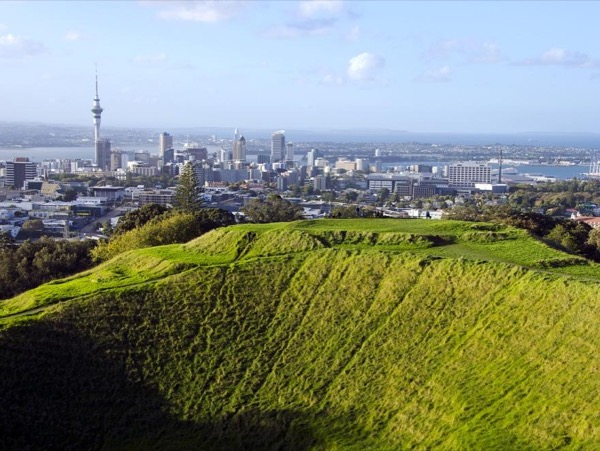 Auckland City Highlights - Half Day Private Tour