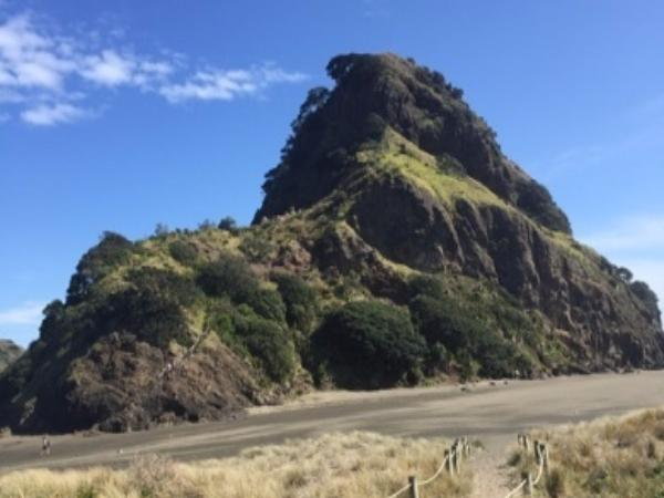 Auckland - Coast to Coast private tour