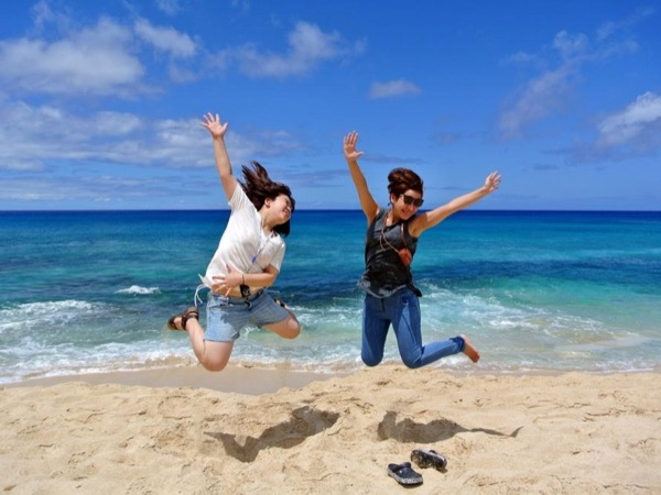 Up to 2 guests-Full day circle Island and North Shore Tour