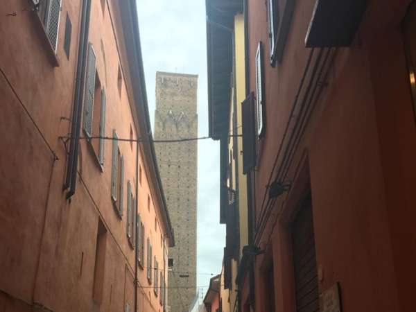 Medieval Bologna in a shore excursion for 7 people