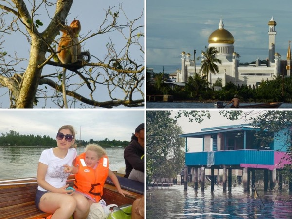Bandar City, River & Wildlife - Half Day (up to 4 guests)