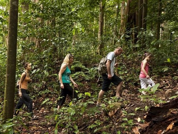 Historical and Rain Forest Castries Tour