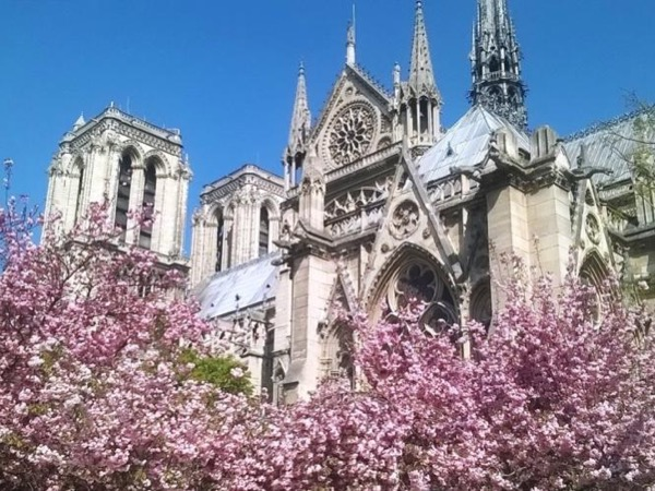 This is Paris! 5-hour private tour