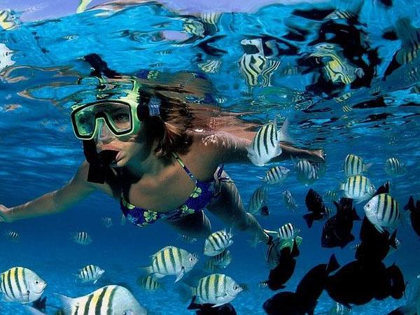 Saint Lucia Snorkel Excursion
