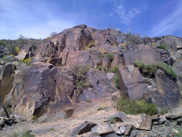 Tamgaly petroglyphs Tour