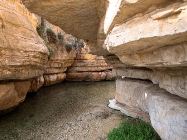 Wadi Qelt trekking tour