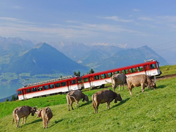 Mt. Rigi, Queen of Mountains tour (5h)