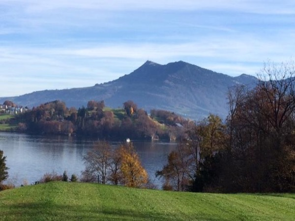 Combined Luzern & Mt. Rigi tour (7h)