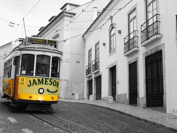 Lisbon for Beginners