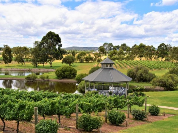 Swan Valley Discovery - Private Tour - A day trip out of Perth