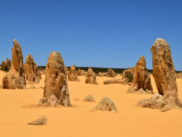 Pinnacles Sightseeing, Seafood & Sandboarding - Private Tour
