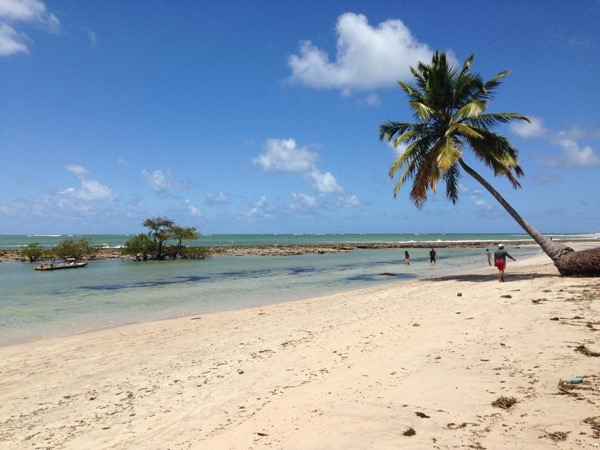 Private Carneiros Beach with Catamaran Tour