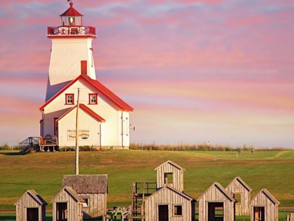 Coastal Lighthouse & Winery Private Tour