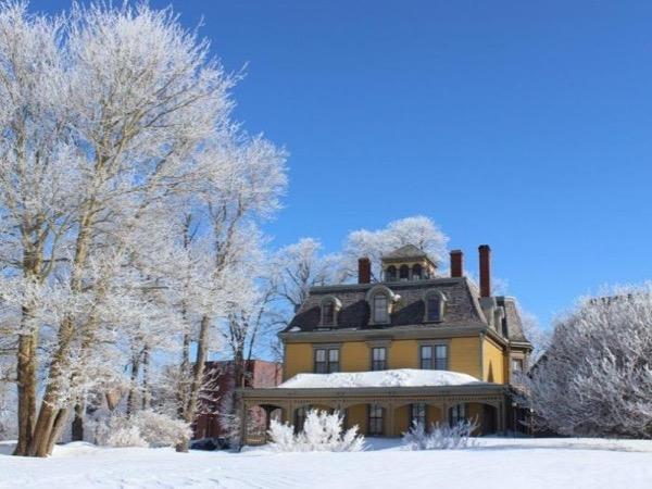 Winter Wonderland - Private Tour