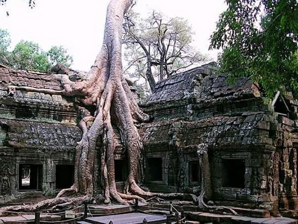 Create Tour Own Siem Reap Tour
