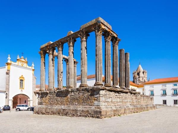 Évora & Cartuxa: Alentejo Full Day Private Tour
