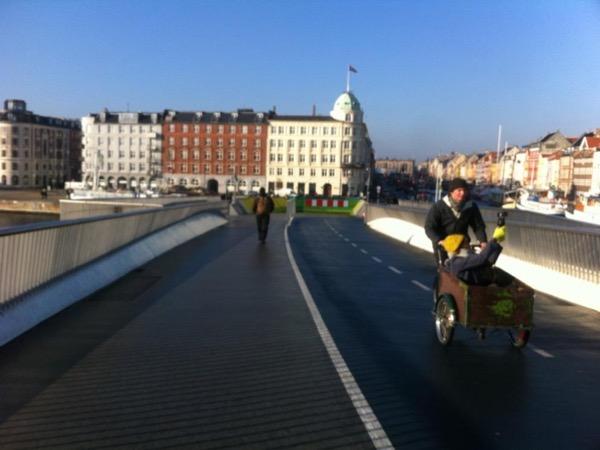 Copenhagen all year - private tour