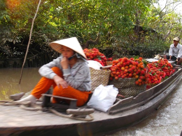 Experience in Mekong Delta: Cai Be Village- Fruit Gardens- Small Floating Market