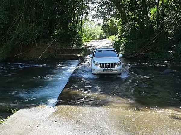 4x4 SUV Luxuriant Tour of North Martinique