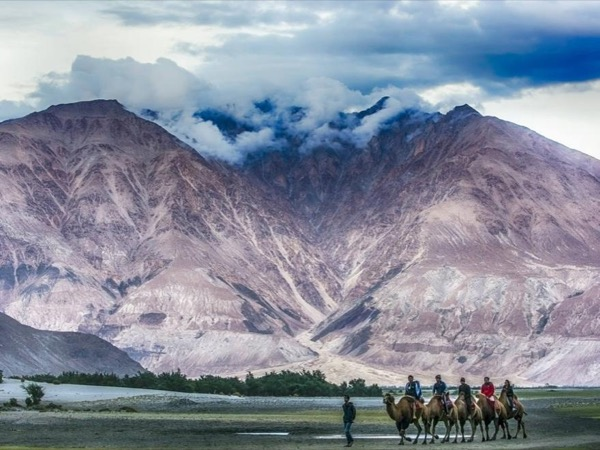Ladakh Tours and Treks