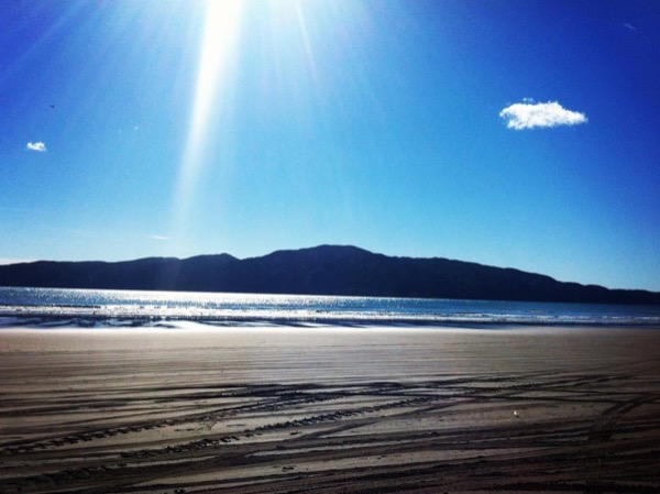 Private Kapiti day tour
