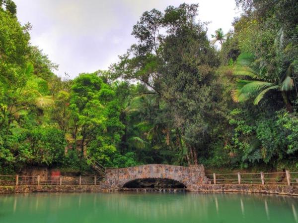 El Yunque: Una Maravilla Natural