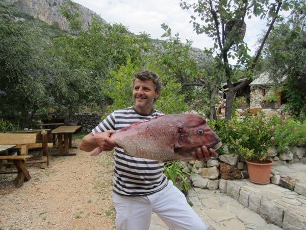 Culinary Delights of Dalmatia