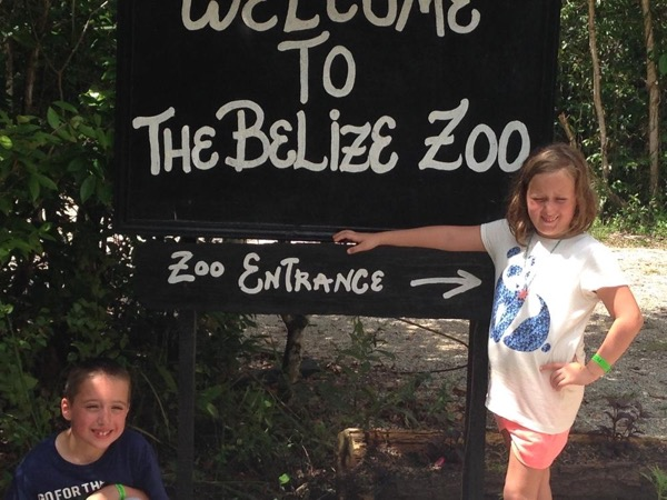 Belize Zoo experience