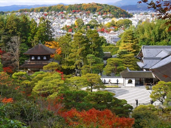 Kyoto Highlights -Silver- Private tour