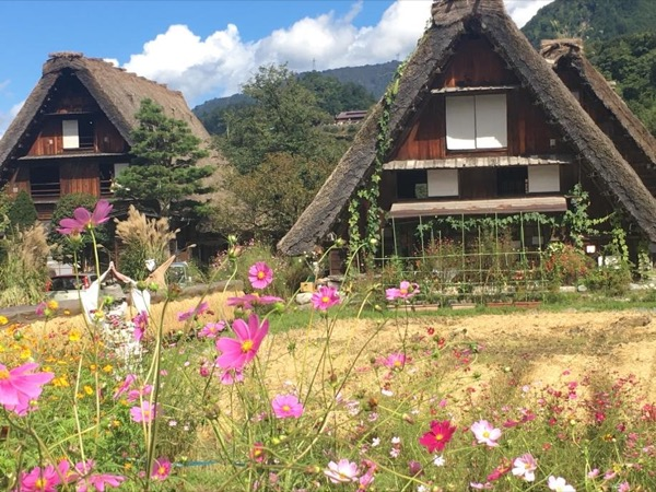 Private tour to shirakawago