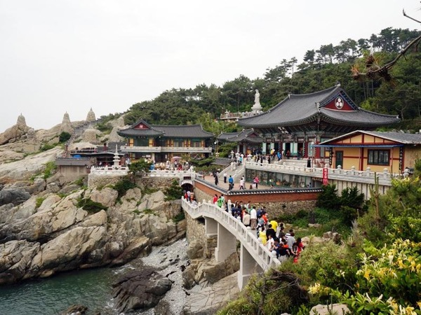 Busan Day Tour including Haedong Yonggungsa Temple ( Shore Excursion )